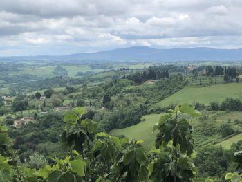 Food Travel Tuscany