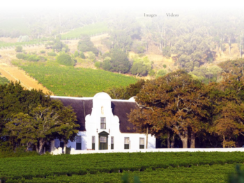 Groot Contantia, Oldest Winery in S. Africa 4